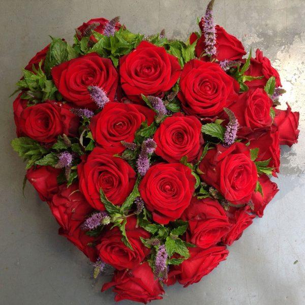 Hart rode rozen